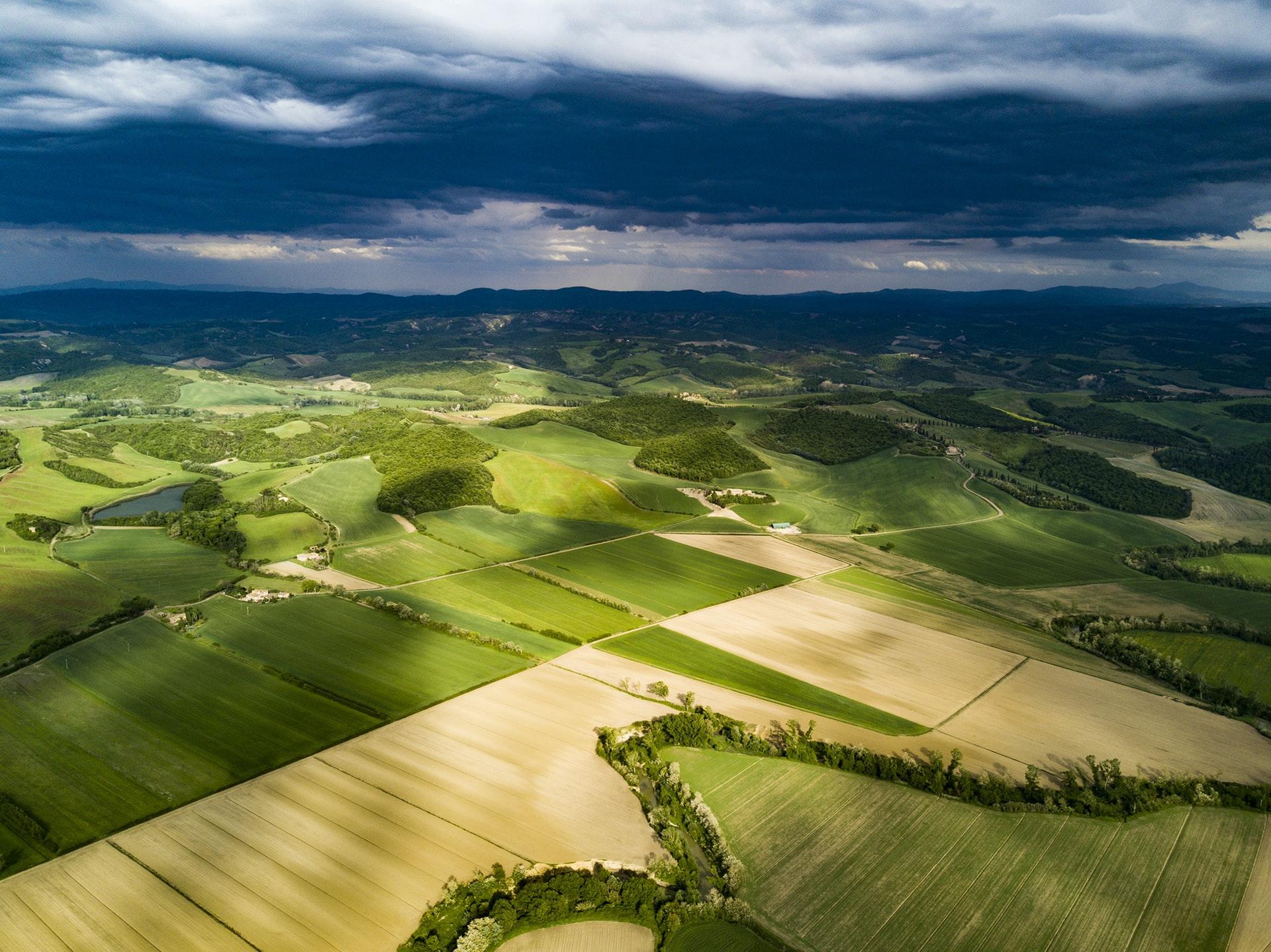 Post-pandemic future: development of farming